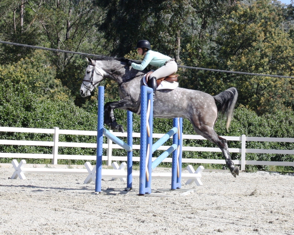Callie Schott rides Welcome BF on 5.7.12