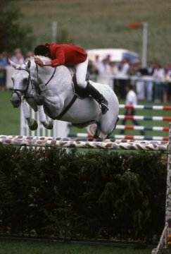 horse_silbersee-_3big