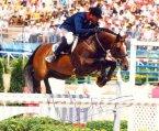 horse_quidam_de_revel-_2big